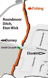 Roundmoor Ditch – Eton Wick