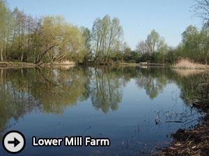 Lower Mill Farm