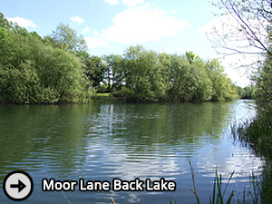 Moor Lane Back Lake