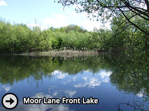 Moor Lane Front Lake